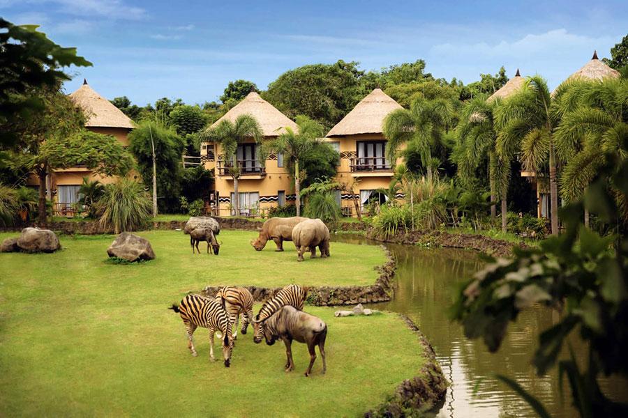 Bali Safari & Marine Park | Roy Bali Driver & Private Tour ...